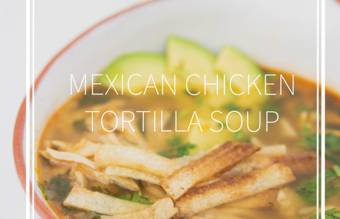 a white bowl of mexican chicken tortilla soup with avocados, tortilla stripes and cilantro
