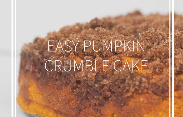 side shot of Easy Pumpkin Crumble Cake on a metal pan with title